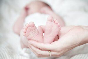 Geboorteborden